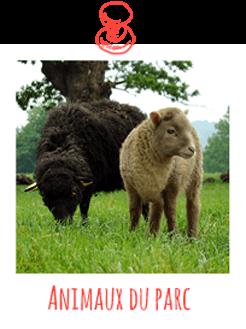 animaux-du-parc246px